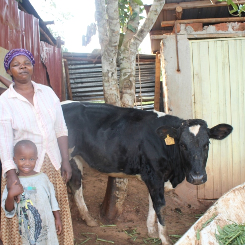 Florence, her daughter, Mirembe, and Dalton with the cow they received through the Calf Program.